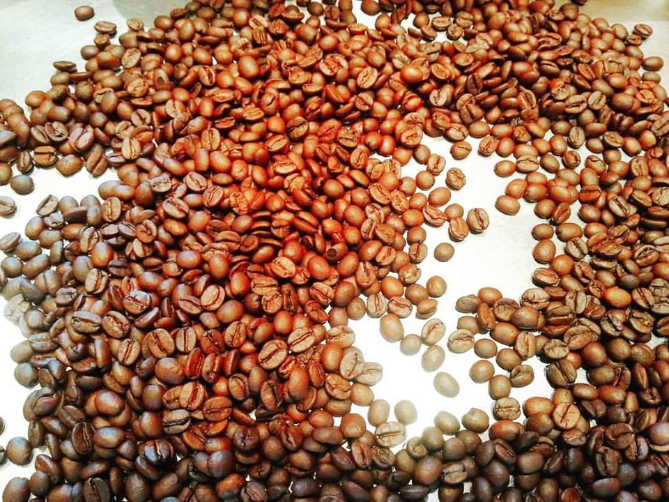 焙煎したてのコーヒー豆入っています。