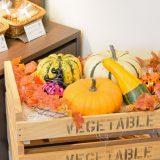 かぼちゃの重量当てゲーム